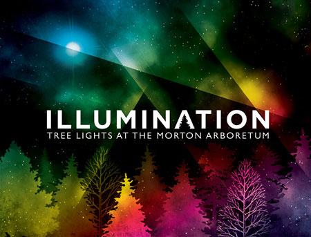 Morton Arboretum Illuminations Tree Lights